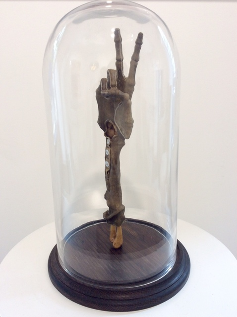 , 'Shrunken Glove,' , Lawrence Alkin Gallery