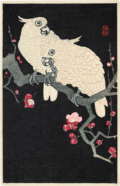 Ohara Koson, 'Two Cockatoo on a Branch of Blossoming Plum', ca. 1930s, Scholten Japanese Art