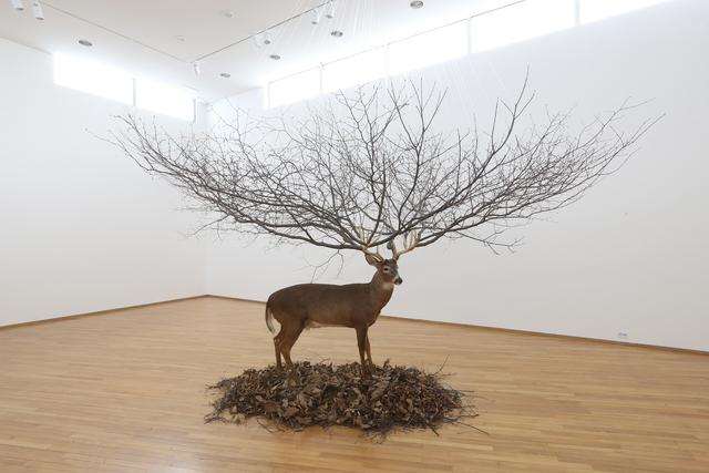 , 'Deer,' 2008, Gallery Ihn