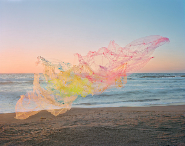 Thomas Jackson (b.1971), ' Tulle no. 18, Point Reyes National Seashore, California', 2020, Photography, Archival pigment print, Jackson Fine Art