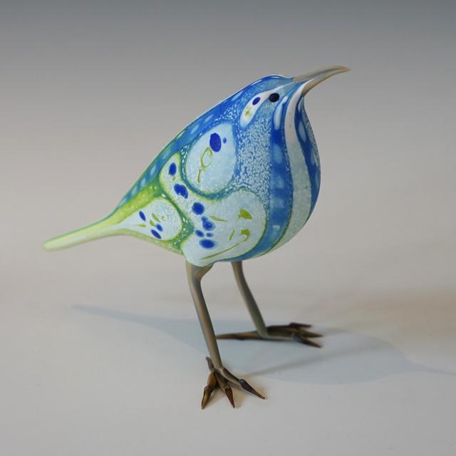 Shane Fero, 'Cornflower Jay', 2019, Kuivato, a Creative Gateways Gallery