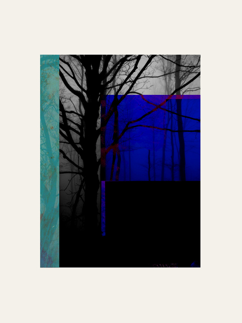 , 'Forest XX,' 2018, Artgráfico