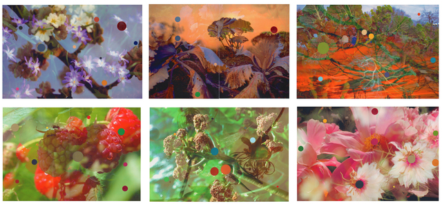 , 'Study for Double Exposures (Expanded) set of 6 works,' , Montoro12 Contemporary Art