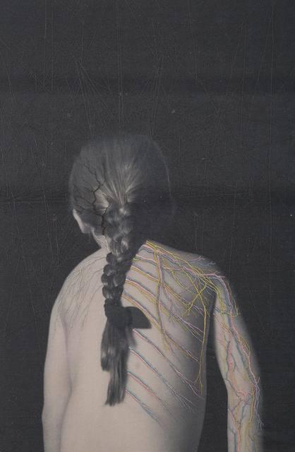 , 'Distaff.04, (Nervious System),' 2017, Isabel Croxatto Galería