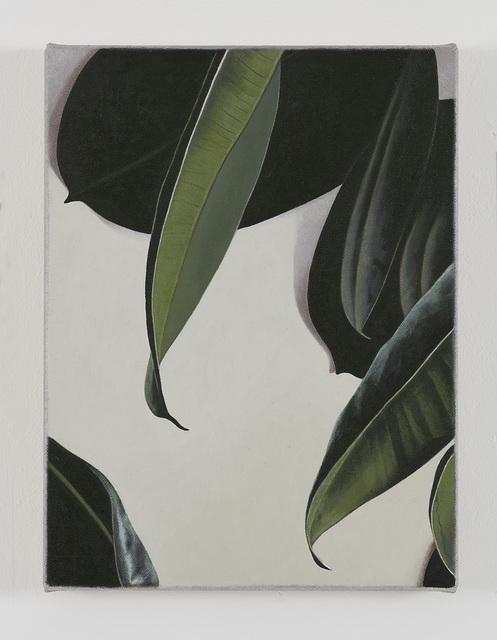 , 'Rubber Plant,' 2016, Gió Marconi
