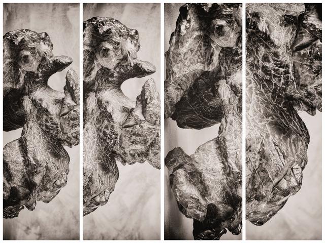 Daniel Eskenazi 丹尼爾·埃斯肯納茨, 'Synoptikos IV', 2019, Rasti Chinese Art