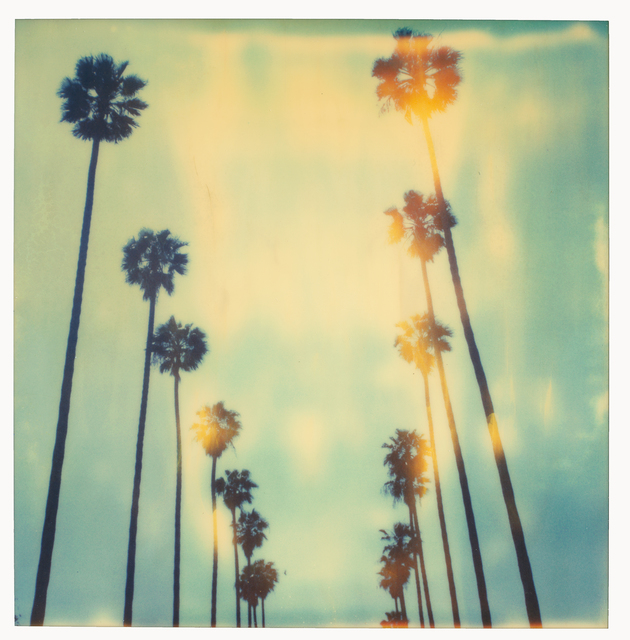 Stefanie Schneider, 'Palm Trees on Wilcox - sold out Edition of 10, Artist Proof 2/2 (last) - analog', 1999, Instantdreams