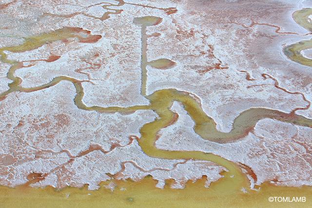 , 'Salt Tide,' 2015, Forest & Ocean Gallery