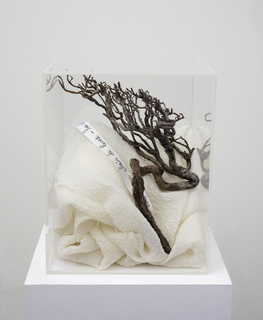 , 'Chute de camélias blanc ,' 2018, Buchmann Galerie Lugano