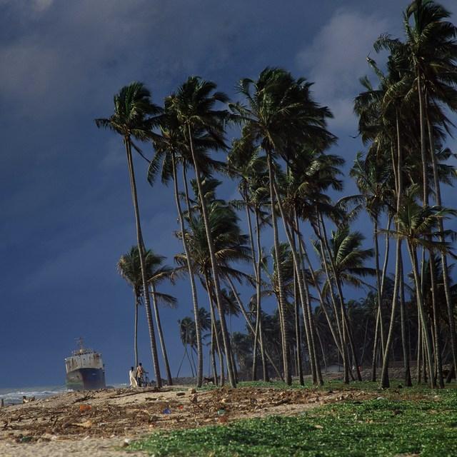 , 'Colombo, Sri Lanka,' 1996, Osborne Samuel