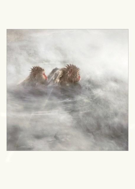 Lisa Roet, 'Spirited Away 4', 2017, Gow Langsford Gallery