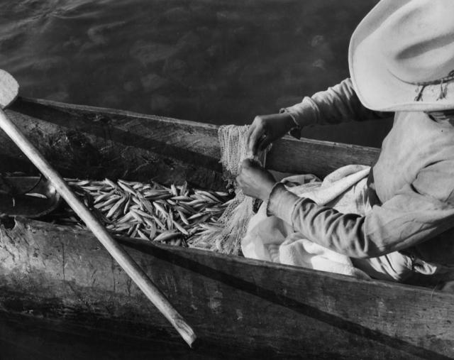 Rodrigo Moya, 'Pescador tarasoa', 1970, Etherton Gallery
