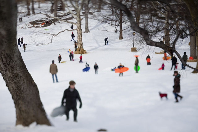 , 'Central Park [February 12-13, 2010],' 2010, Madelyn Jordon Fine Art