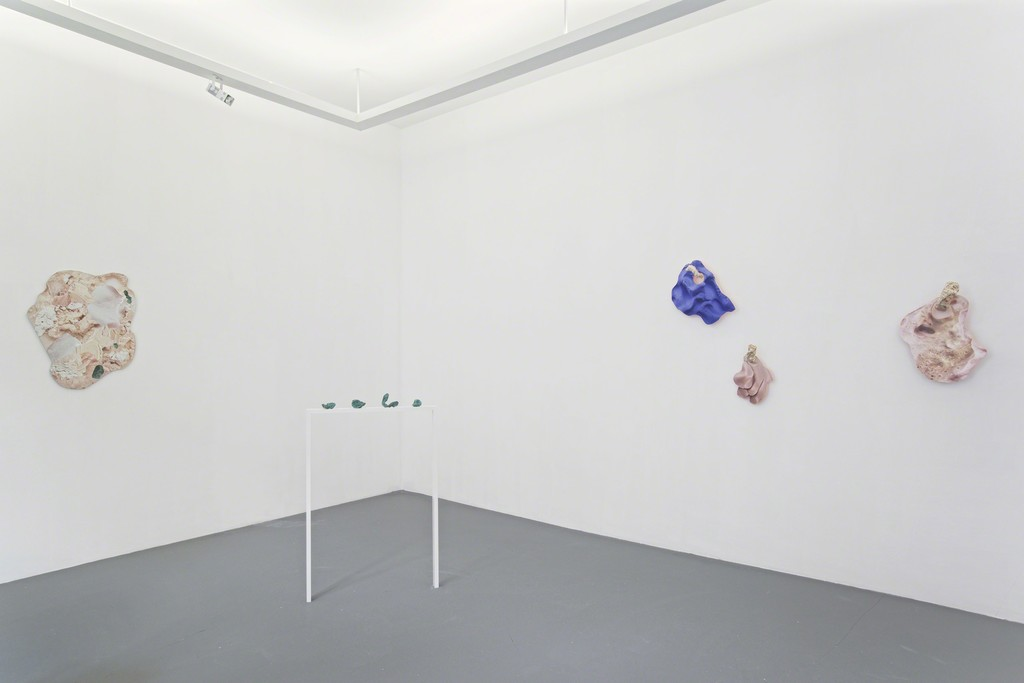 Rachel de Joode  Surfaces – Installation view, 2015