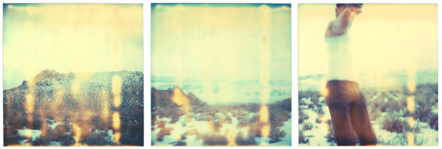 Stefanie Schneider, 'Past the decisive Moment (triptych) analog C-Print, 128x401 cm installed', 2006, Photography, Analog C-Prints, hand-printed by the artist on Crystal Fuji Archive, matte surface, based on 3 SX-70 original Polaroids, not mounted., Instantdreams