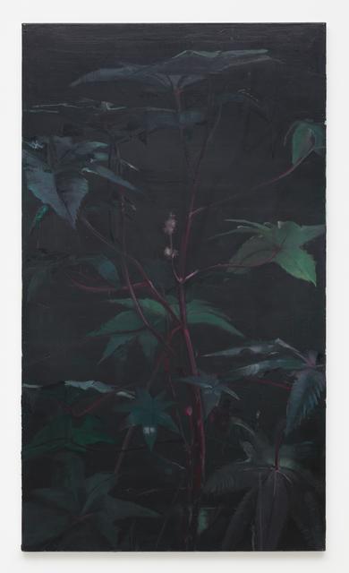 Joris Ghekiere, 'Untitled', 2010, Painting, Oil on canvas, Kristof De Clercq