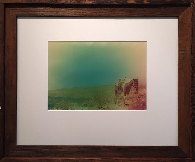, 'New Wave Horse,' 2015, Deborah Colton Gallery
