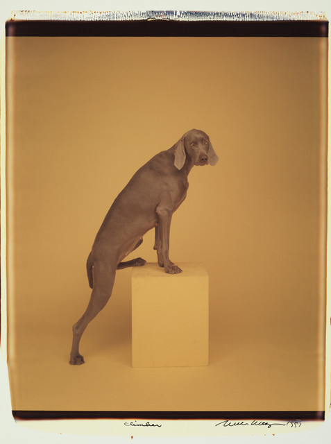 , 'Climber,' 1991, Huxley-Parlour