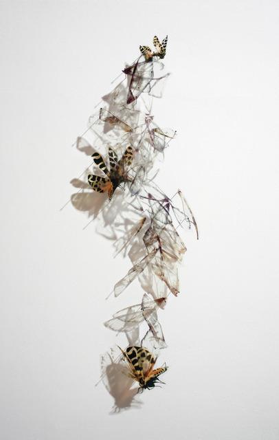 Alan Bur Johnson, 'Progeny Fig. 11', 2012, Lisa Sette Gallery