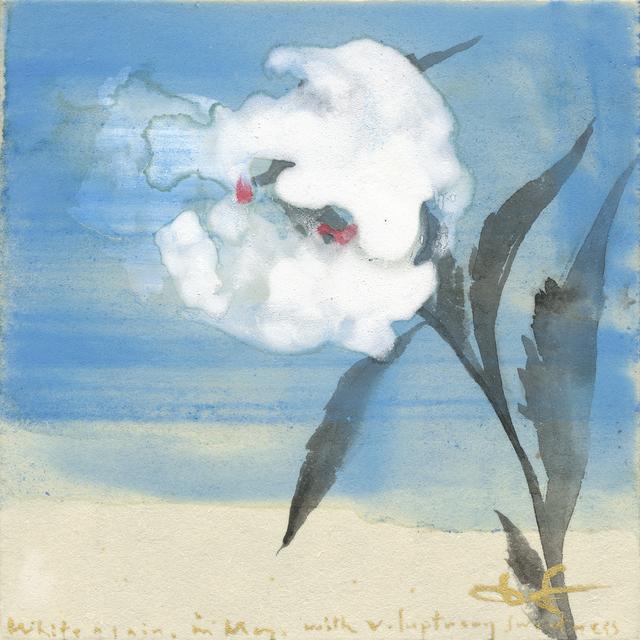 , 'White again in May  五月花又白,' 2016, Artrue Gallery