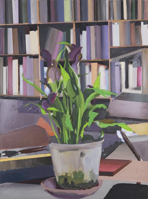 , 'The Exact Distance Between Flower and Bookshelf III,' 2017, Hans Alf Gallery