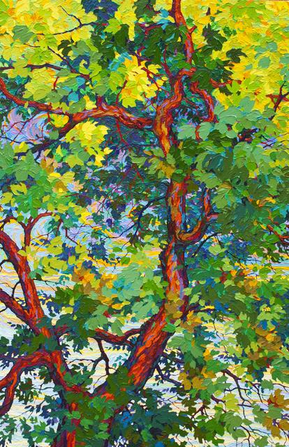 Frank Balaam, 'Majestic Cottonwood', 2015, Ventana Fine Art