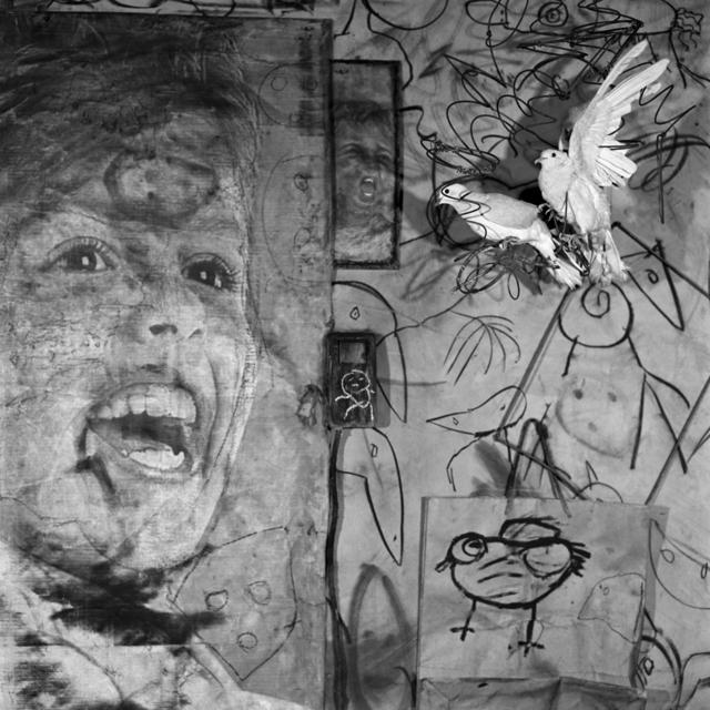 , 'Banner,' 2009, CHRISTOPHE GUYE GALERIE