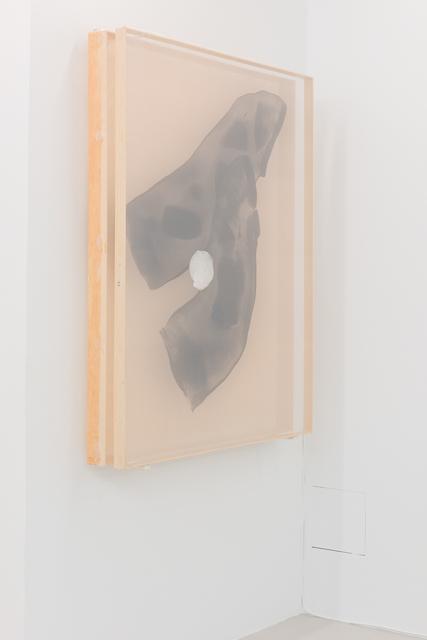 , 'I think mango you say salmon #II,' 2015, Annka Kultys Gallery