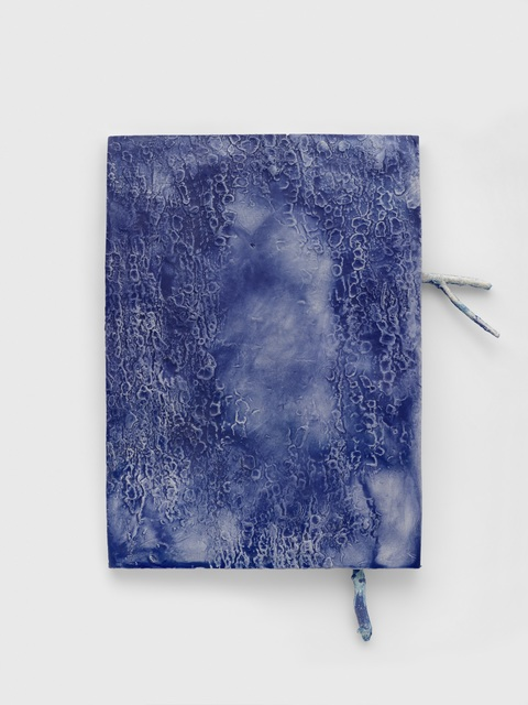 , '  La pel digl gôt (blueblue) ,' 2016, Heinzer Reszler