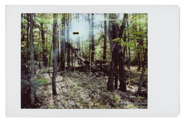 , 'Alien 11,' 2017, Robert Klein Gallery