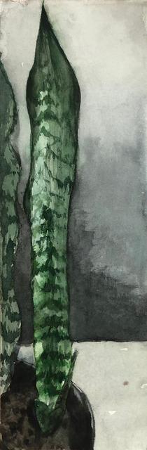 Eduardo Berliner, 'Plantas [Plants] III', 2020, Painting, Aquarela sobre papel [watercolor on paper], Casa Triângulo