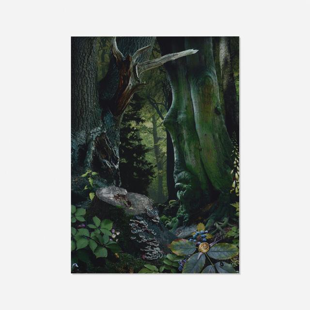 Ruud Van Empel, 'Study in Green #18', 2004, Wright