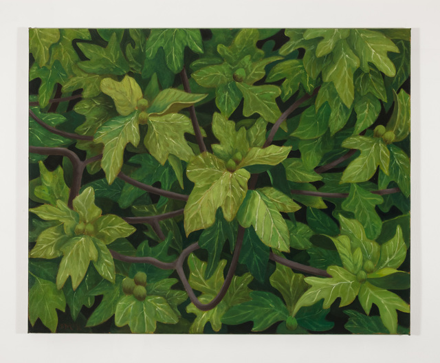 , 'Fig Tree,' 2012, Kerlin Gallery