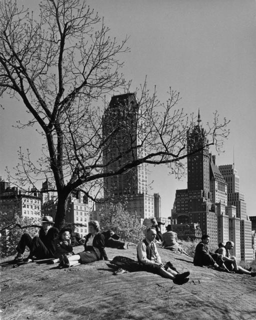 Andreas Feininger, 'New York, Central Park', 1940, Etherton Gallery