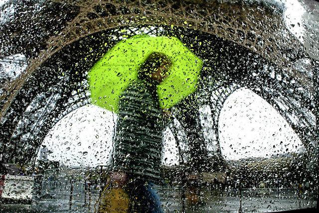 Christophe Jacrot, 'Graines d'eau', 2010, B Lounge Art