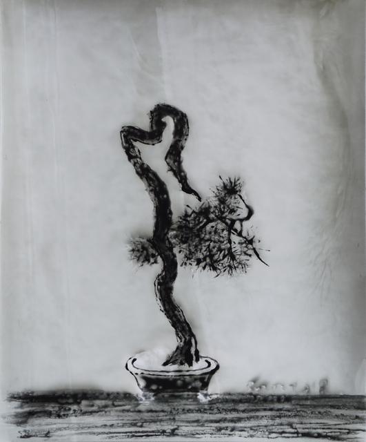 , 'Bonsai,' 2018, M97 Gallery