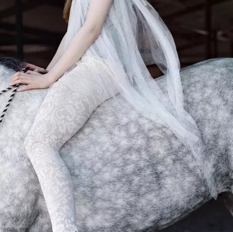 Laura Wilson, 'Dapple Grey Horse with Lace', 2010, Afterimage Gallery