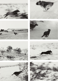 John Divola, 'Selected Images from Dogs Chasing My Car in the Desert,' 1996-2000, Phillips: The Odyssey of Collecting
