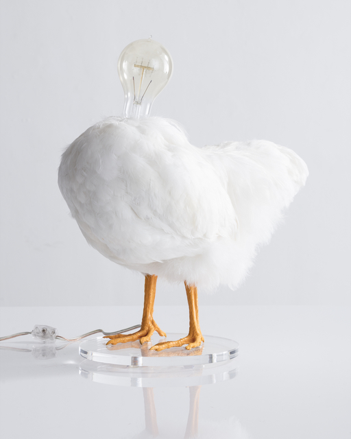 Sebastian Errazuriz, 'Chicken Lamp. Taxidermy chicken and electrical components', 2018, R & Company