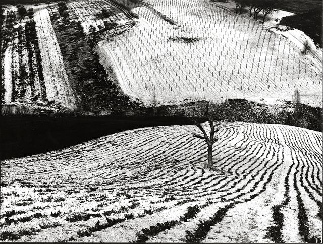 , 'Paesaggio 283,' 1968, Robert Klein Gallery