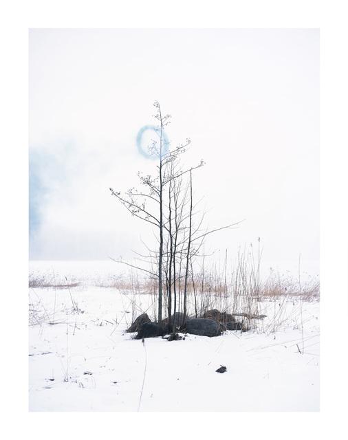 Axel Antas, 'Binary (Blue)', 2016, Galleria Heino