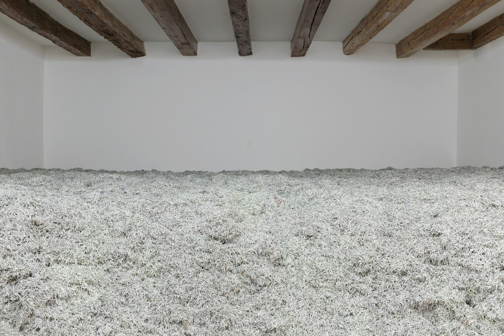 Christodoulos Panayiotou. 2008, 2008, shredded paper (Cypriot pounds), dimensions variable. Photo by Aurelien Mole