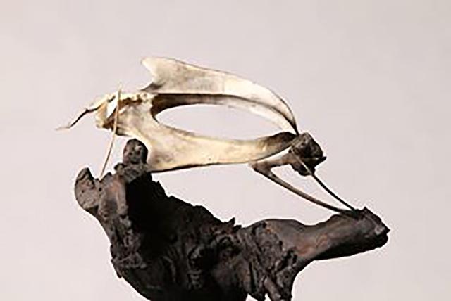 , 'Untitled,' 2010, CAMA Gallery