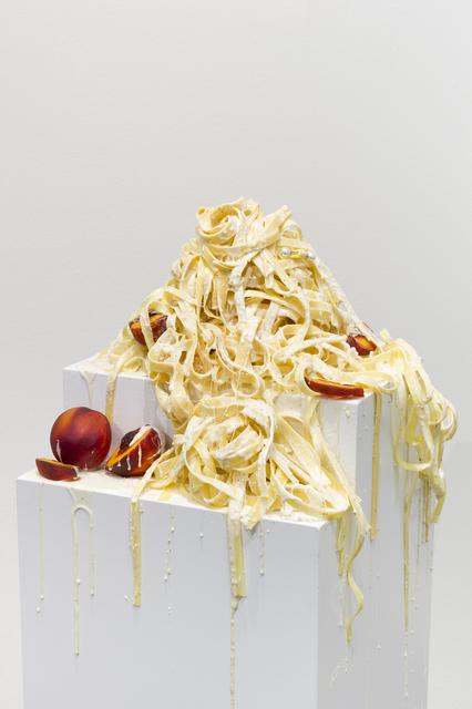 , 'A Fantastic Ignorance,' 2016, Galerie Sébastien Bertrand