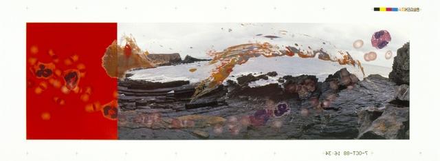 , 'Viral Landscape No. 3  120 x 300 cm ,' , Richard Saltoun