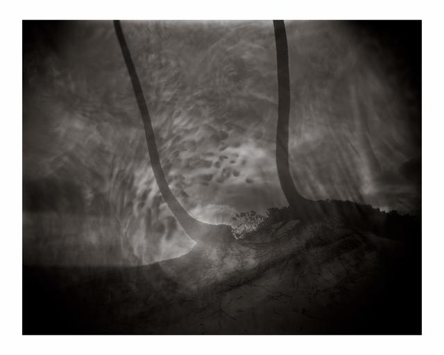 Sally Mann, 'Untitled', Photography, Iris print, BAM Benefit Auction