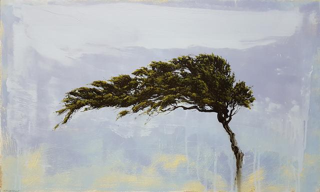 Robert Marchessault, 'Aruban Winds', 2018, Wallace Galleries