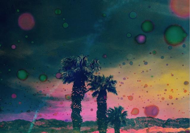 , 'Psychedelic Palms,' 2015, LAMB Arts
