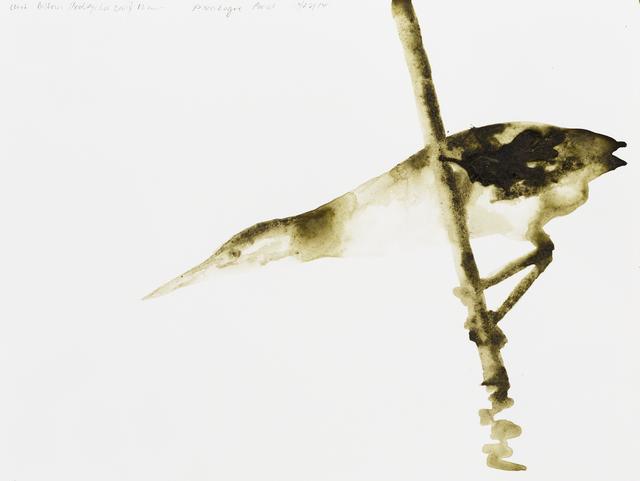 , 'Least Bittern (Ixobrychus exilis),' 2014, Parrish Art Museum