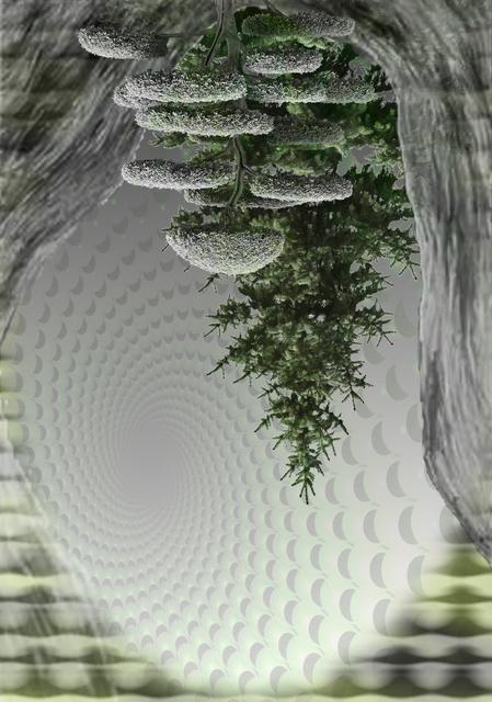 , 'Upside Down Trees,' 2015, Wirtz Art